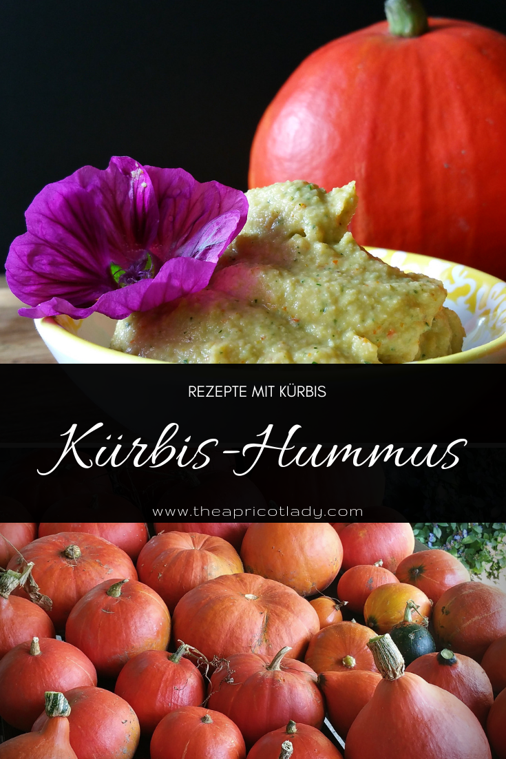 Kürbis-Hummus #vegan #bio #selbstgemacht #rezept #brotzeit #kürbis
